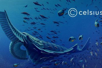 Celsius Network Launches Crypto-Backed Lending Platform