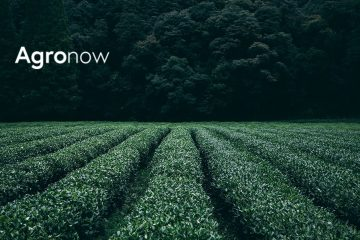 With artificial intelligence, Agronow is beginning a new revolution in agribusiness: Agriculture 5.0