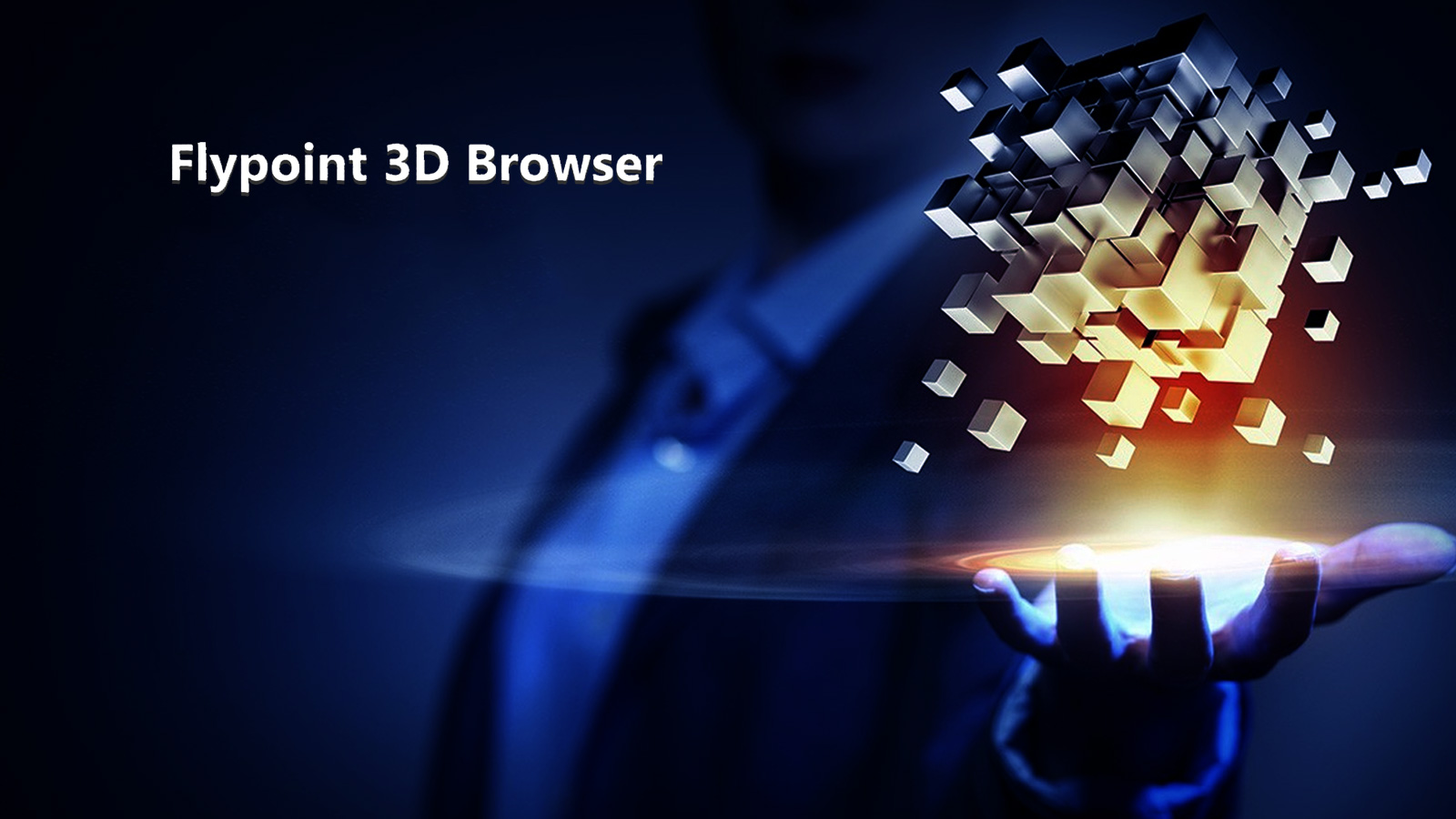 New Internet: 3D, Animation, Interactivity and No Programming