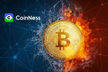 Amid a Bear Market, How Does Crypto Firm CoinNess Thrive