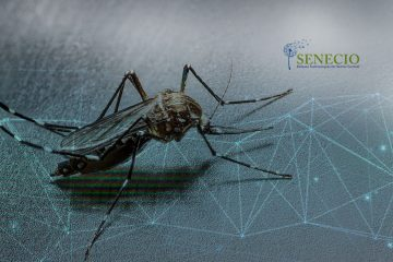 An AI-Based Robotic Machine Arrives to Combat Mosquito-Borne Diseases